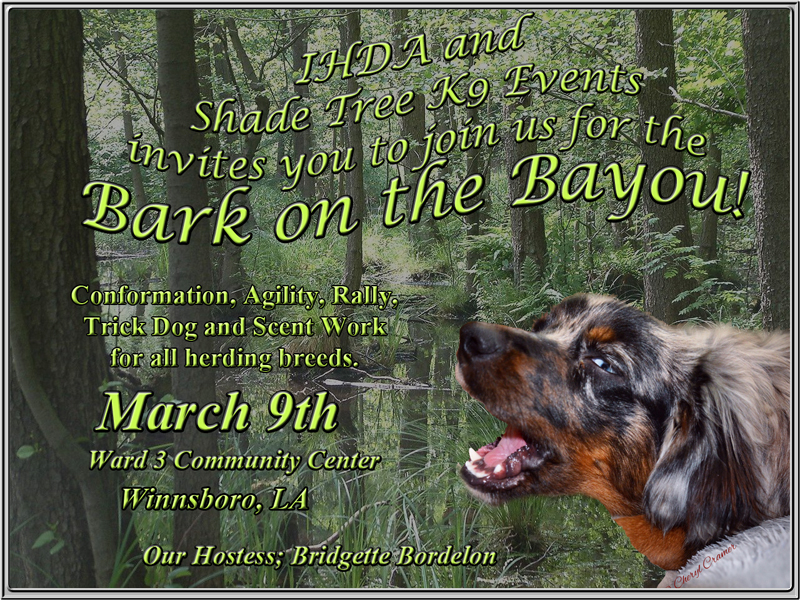 Announcement for the Bark on the Bayou show.